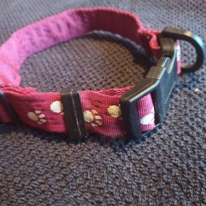 Pink collar with Galway SPCA writing